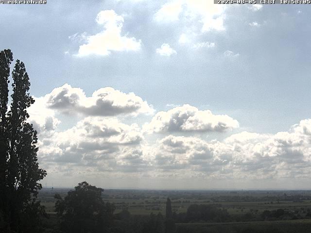 Neustadt (Weinstraße) Rhine Valley Panorama